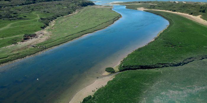 la rivière et l'océan